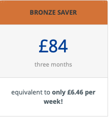 Bronze Saver